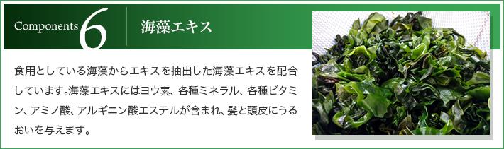 6.海藻エキス